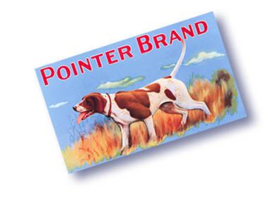 Pointer Brand...