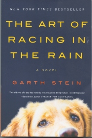 Image result for the art of racing in the rain