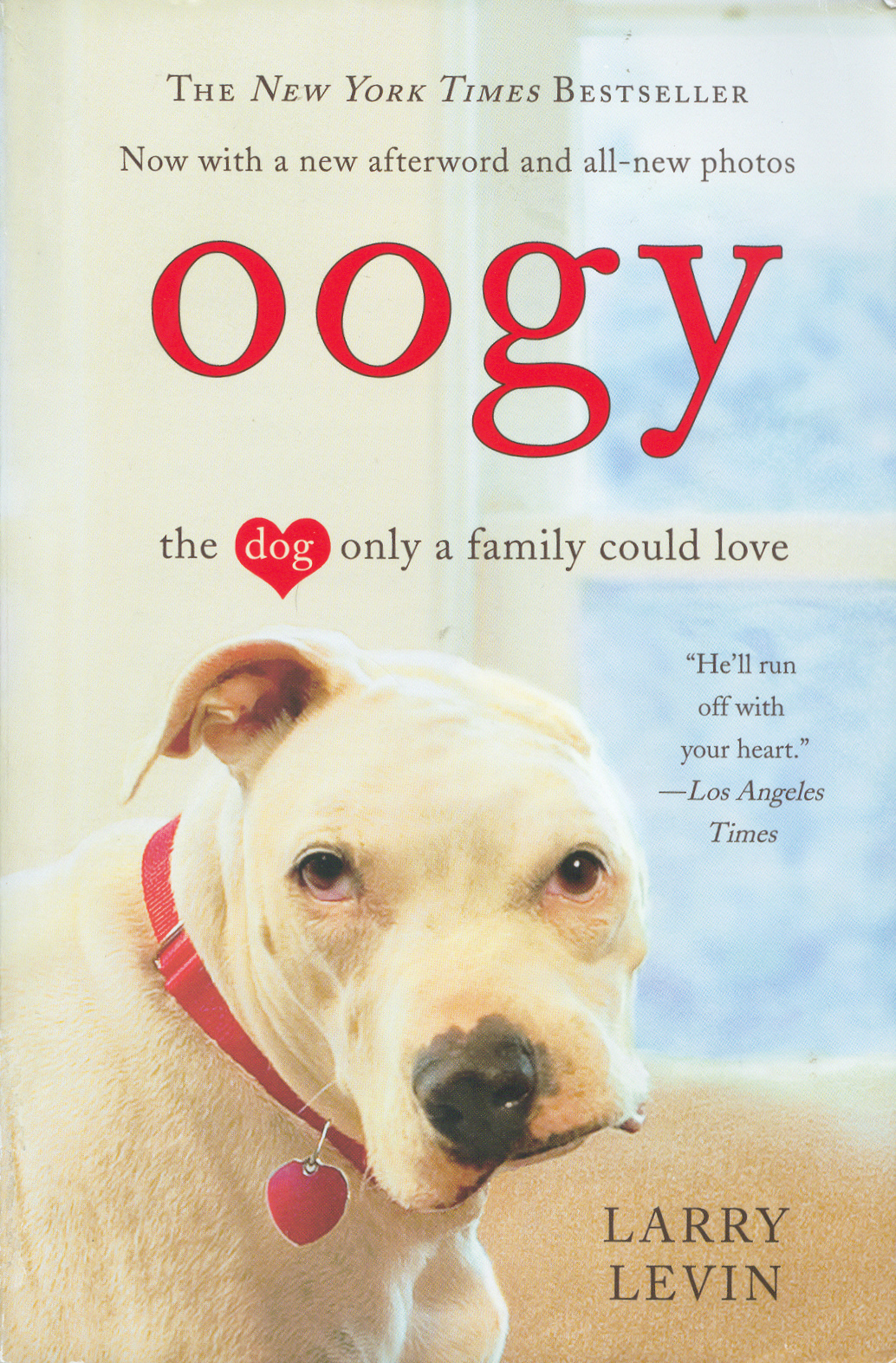 Oogy The Dog Only A Family Could Love Doggymomcom