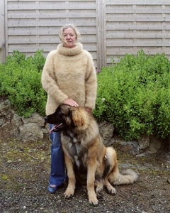 Beige dog hair sweater