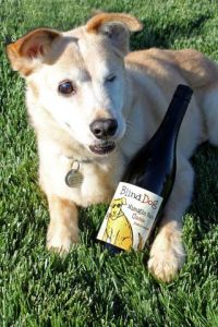Blind dog, Toby, with a bottle of Blind Dog Wine
