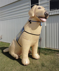 Independence, a dog balloon proudly wearing a Canine Companions assistance dog vest, will appear in the parade on January 21st.