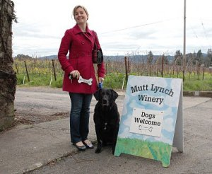 Dogs are welcome at the Mutt Lynch Winery