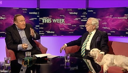 Miss Molly naps in David Starkey's lap (photo courtesy of the BBC)