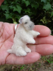 Sealyham Terrier miniature