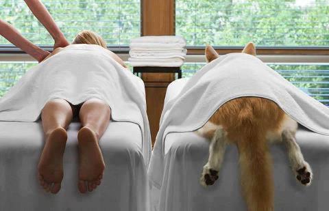 service massage doggy stil