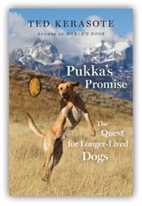 Pukka's Promise cover