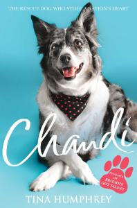 Chandi book cover
