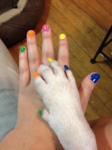 Dog nail polish photo