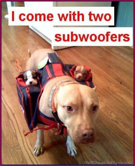 I come with 2 subwoofers