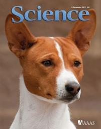 Science magazine November issue