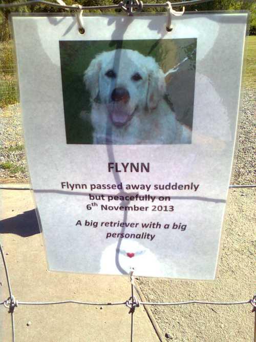 Flynn's death notice