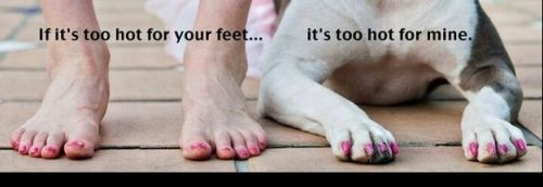 If it's too hot for your feet...