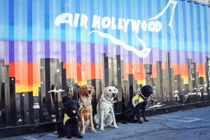 Air Hollywood