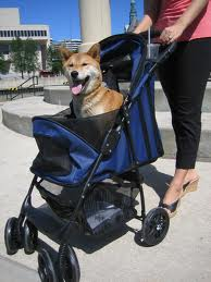 The Happy Trails Pet Stroller