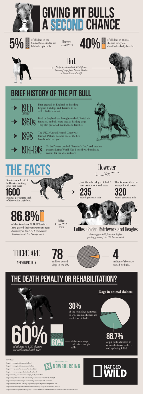 The facts about pit bulls