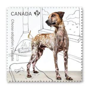 Canada Post 2
