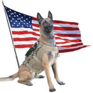 Photo courtesy of SOF K9 Memorial Foundation