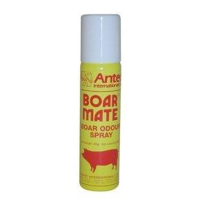 Boar Mate