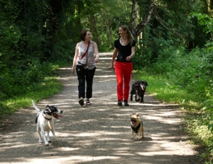Study authors Dr Carri Westgarth and Dr Hayley Christian take an off-lead walk (photo courtesy of University of Liverpool)