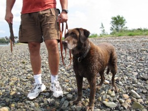 Moxie with her owner Mark Aliberti in Coughlin Park, Winthrop, Massachusetts (photo by Kathleen McNerney/WBUR)