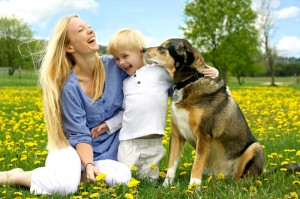 How closely does the relationship between people and their non-human companions mirror the parent-child relationship? Credit: © christingasner / Fotolia