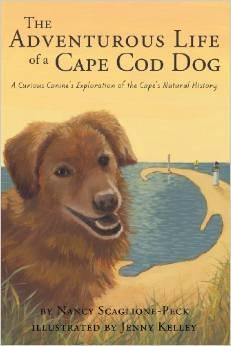 Cape Cod dog