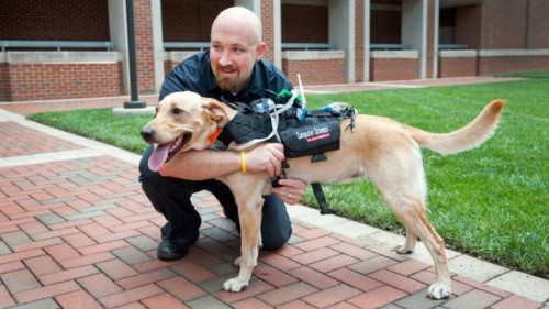 Dr David Roberts with one of his associates  Photo courtesy of North Carolina State University