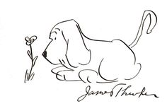 James Thurber dog cartoon