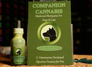 Companion Cannabis, a product as seen in a medical marijuana dispensary in Los Angeles (Photo by Damian Dovarganes, Associated Press)
