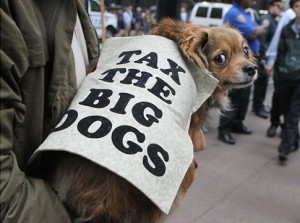 Tax the big dogs