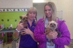Happy Dogz salon's Lianne and Ellie Kent with Pistol and Boo; it was the dogs' visit to the groomers and the subsequent Facebook photos that caught the attention of the Australian authorities