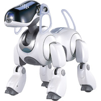 The Sony Aibo