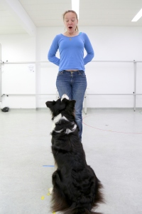 Lisa Wallis with a Border Collie in the test room. (Photo: Clever Dog Lab / Vetmeduni Vienna)