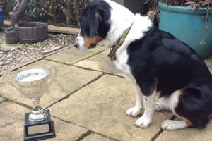 "Barney with his ""Most Improved Dog"" trophy (photo by Vic Barlow)"