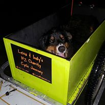Indy tests his trailer before the big journey starts (photo by Leisa)