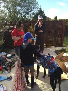A little boy meets a greyhound at our garage sale