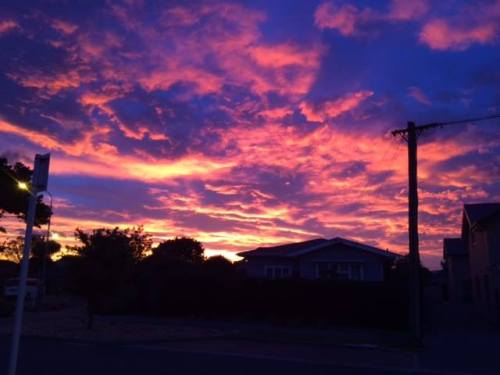 Early morning in Papanui