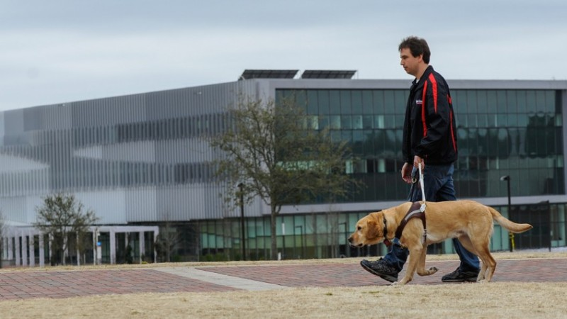 Guide dog and handler