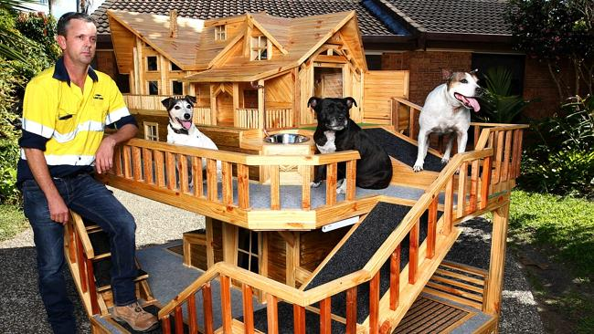 Luxury dog house images galleries for Building a dog kennel business
