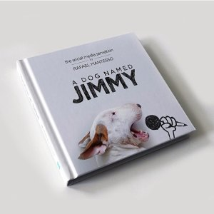 A Dog named Jimmy