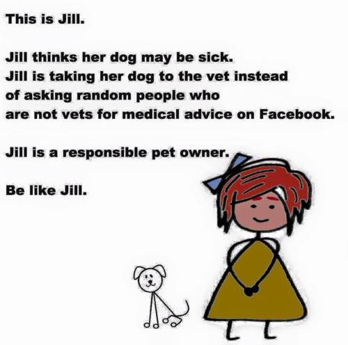 This is Jill