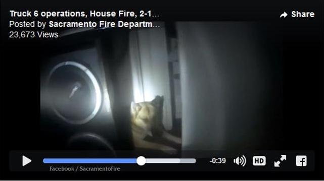 Fire video screen shot