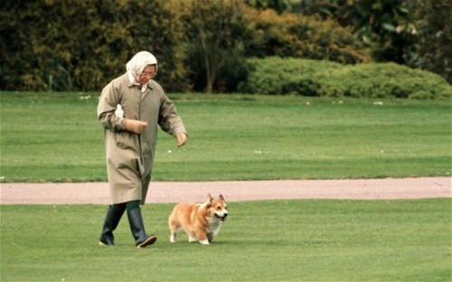 Queen with Corgi