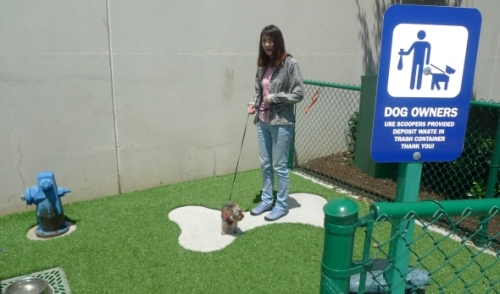 Pet relief area LAX
