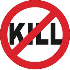 No kill image