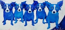 blue-dogs