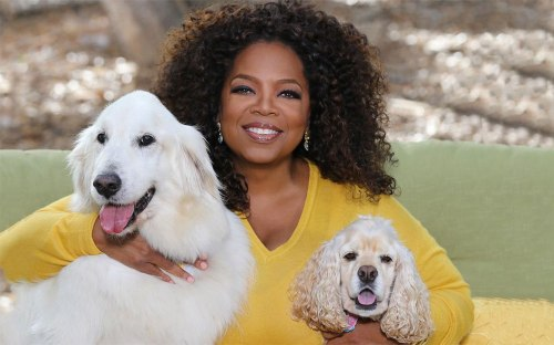 oprah-winfrey-with-dogs