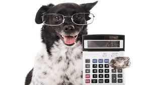 dog-budgeting