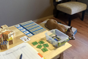 Dogs as rewards for autistic children